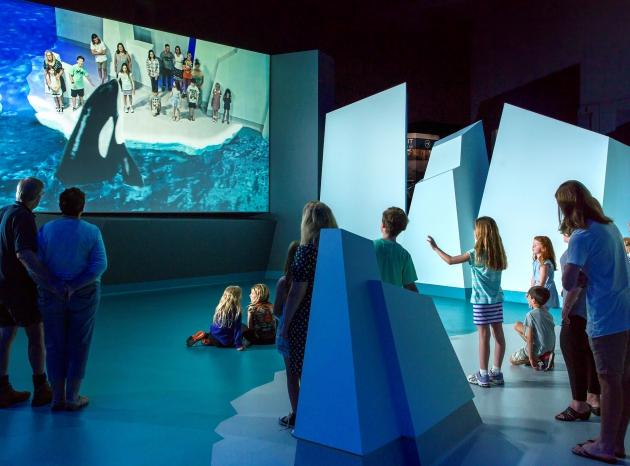 Yale 3D World Magic & Fun, Oostende