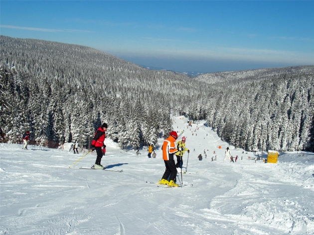slovenië, ski
